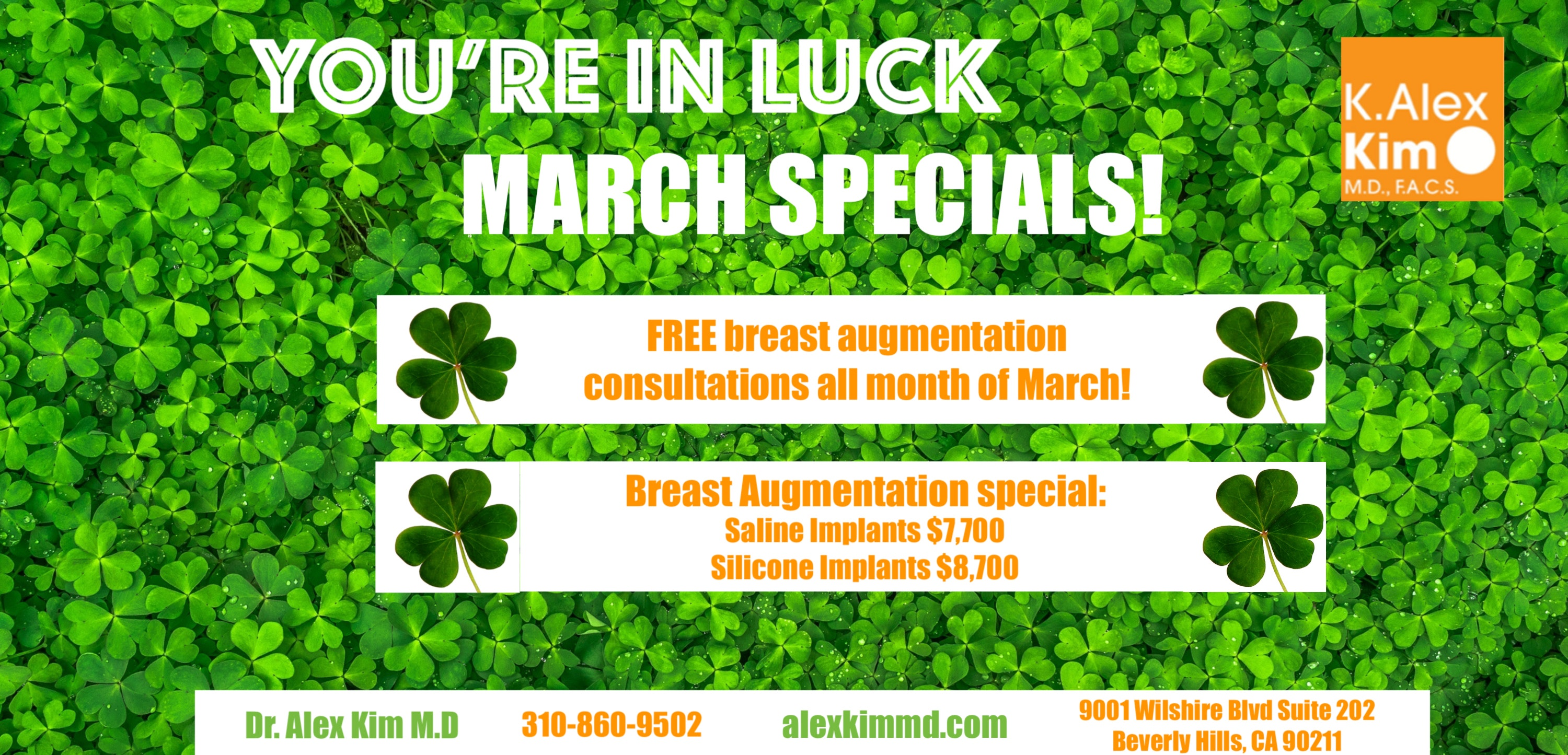 Breast Augmentation special